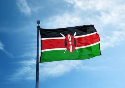 שגרירות קניה