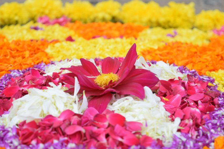 פסטיבל אונאם הודו