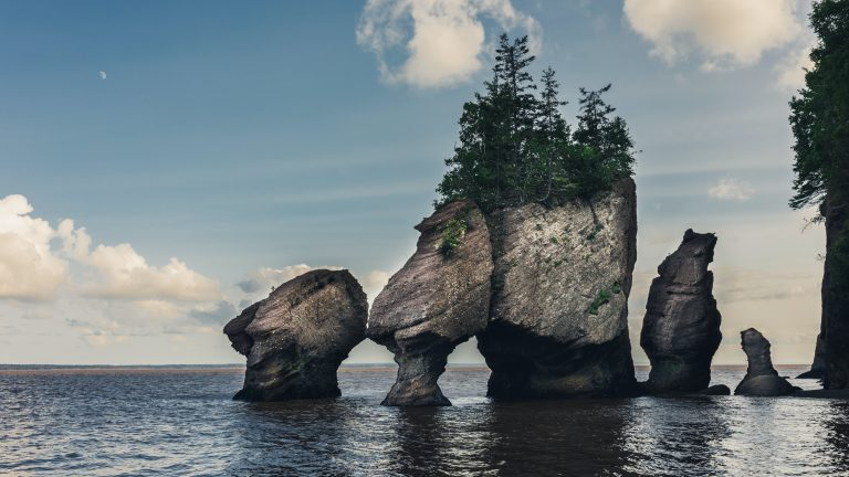 Hopewell Rocks Park